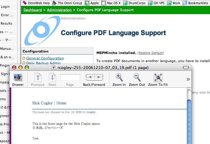 pdf audit space usage fonts